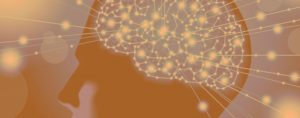 mind-science-banner-img-01